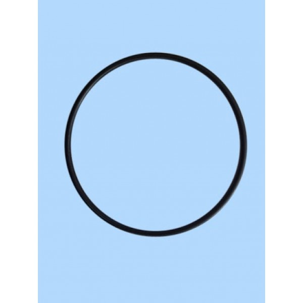 O Ring 10 inch for Jumbo Filter Housing | Water Filters